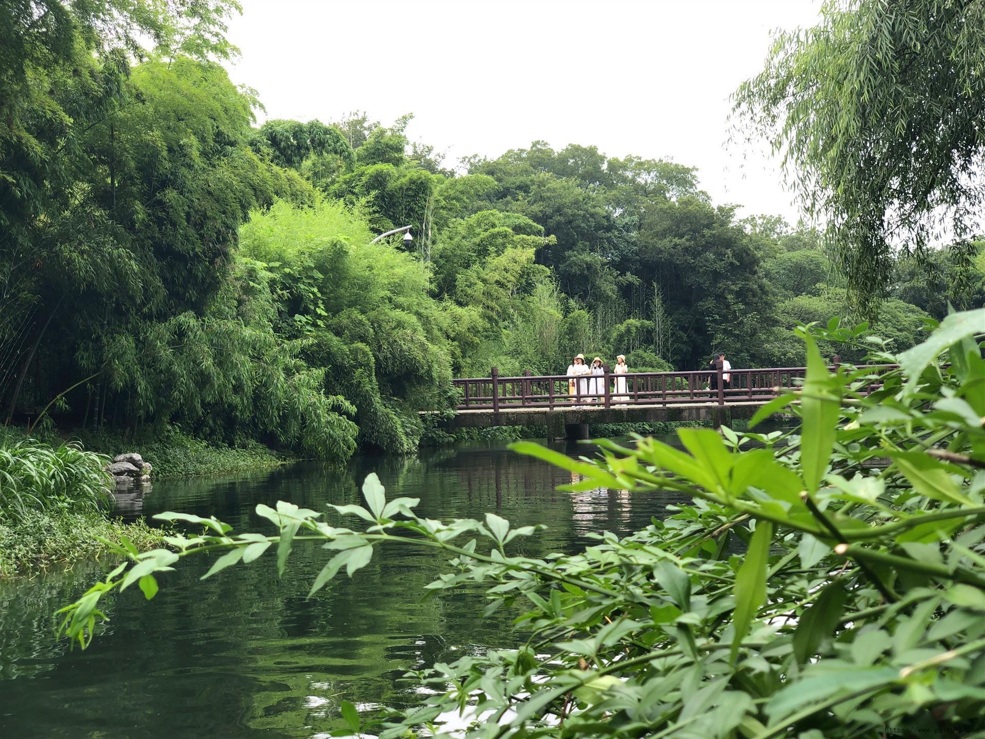 杭州植物园-樱花碧桃园